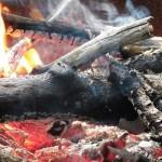 le chauffage au bois un chauffage ecologique