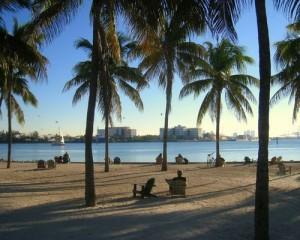 Les plages de Miami et les buildings